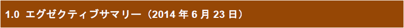 1.0 エグゼクティブサマリー(2014年6月23日)